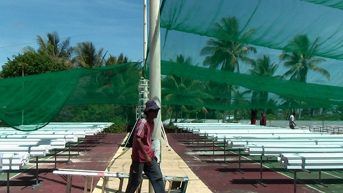 Sat 6th Shade cloth lifted