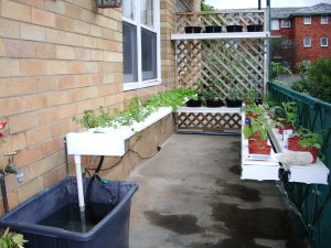 Urban hydroponic agriculture