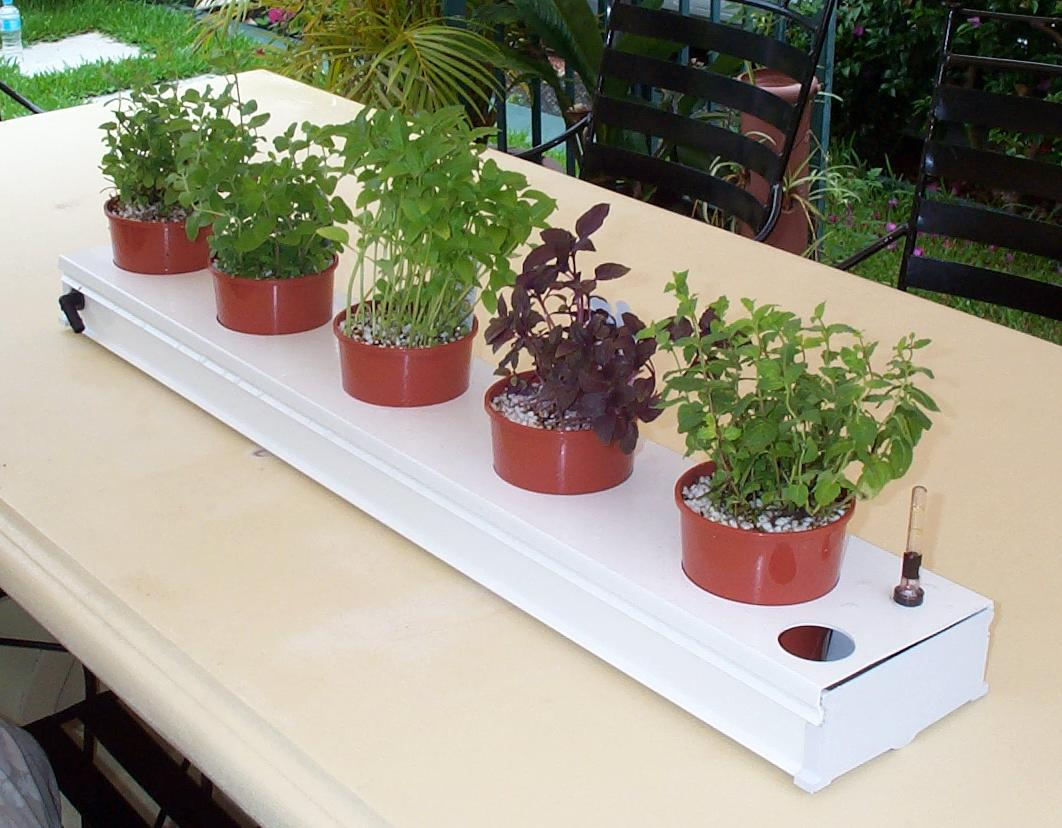 Herb Kitchen Garden Kit Hydroponic Herb Garden Hydroponic Garden Design Ideas Vertical